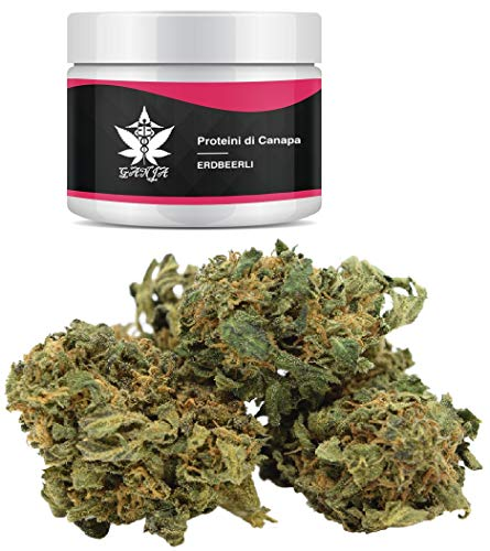 Brand: GANJA | Eberry, product of the highest quality, content 1 g, made in Austria, natural product, neutral packaging, hemp protein.