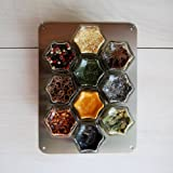 Gneiss Spice Stainless Finish Wall Plate Base for Magnetic Spice Jars, Small 6x8 Inches (Jars Not Included)