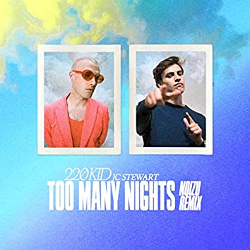 Too Many Nights (Noizu Remix)