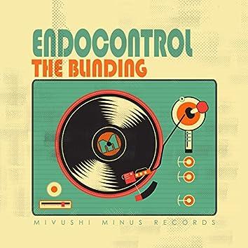 Endocontrol