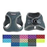 Downtown Pet Supply No Pull, Step in Adjustable Dog Harness with Padded Vest, Easy to Put on Small, Medium and Large Dogs (Titanium, L)