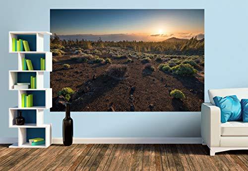 Premium Foto-Tapete Pinus Canariensis (versch. Größen) (Size M   279 x 186 cm) Design-Tapete, Wand-Tapete, Wand-Dekoration, Photo-Tapete, Markenqualität von ERFURT