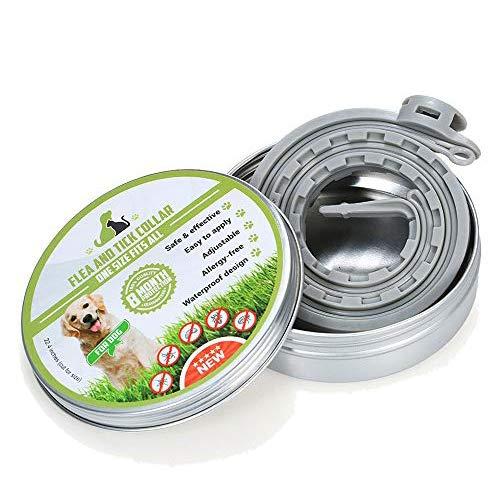 Ritioner Collare Antipulci Cane,Collare Cane Antiparassitario per Cani,8 Mesi Protezione/Olio Essenziale Naturale/55CM Regolabile