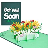 Magic Ants Get Well Soon Card Sympathy Pop Up Cards Flowers Healing Floral 3D Greeting Cards Postcard