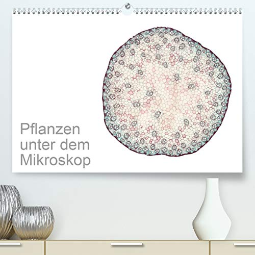 Pflanzen unter dem Mikroskop (Premium, hochwertiger DIN A2 Wandkalender 2021, Kunstdruck in Hochglanz)
