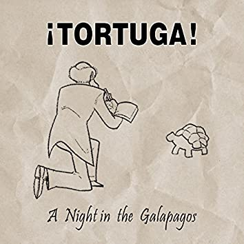 A Night in the Galapagos