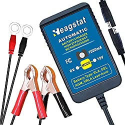 in budget affordable Heagstat Trickle Battery Charger 6V 12V 1000mA Automatic Intelligent Battery for Vehicle Maintenance…