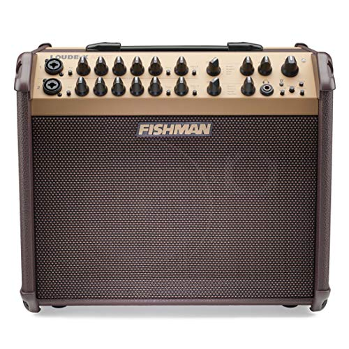 Fishman PRO-LBT-600 Loudbox Artist - Amplificador de guitarra acústica (Bluetooth, 120 W)