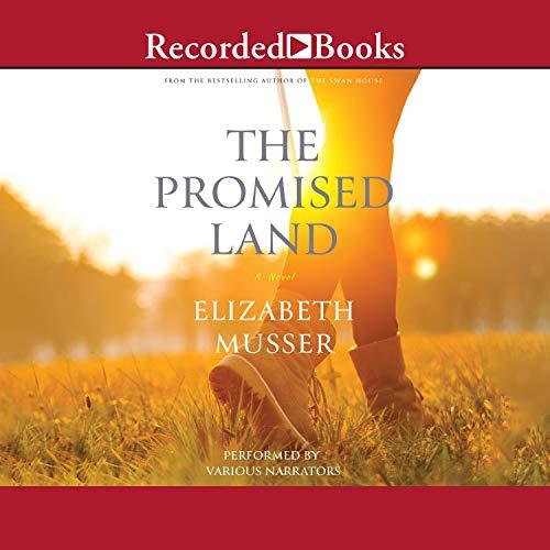 『The Promised Land』のカバーアート