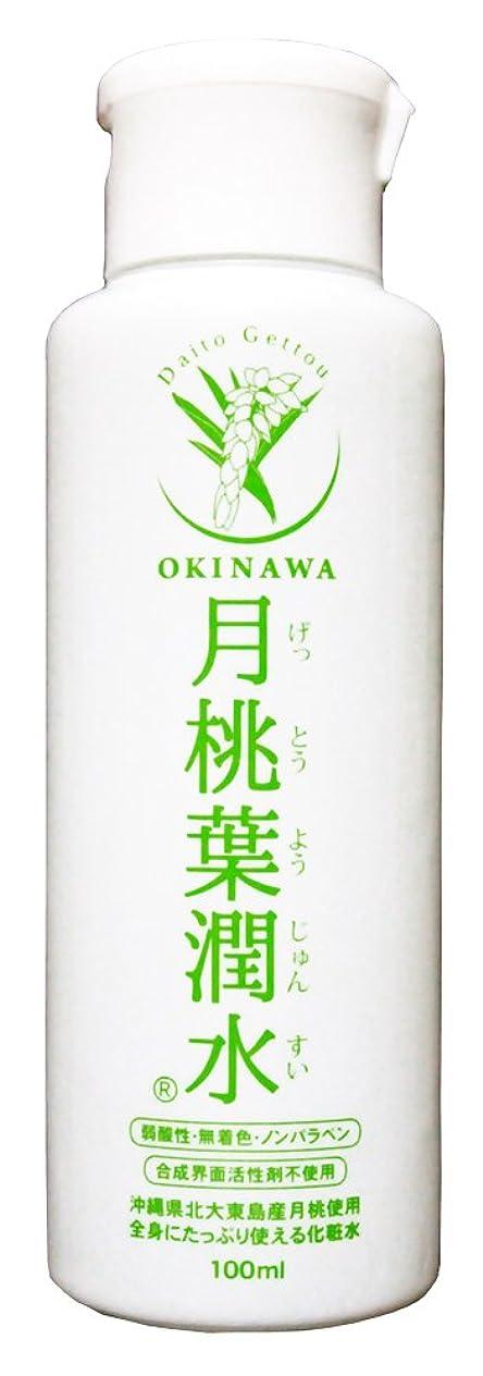 割り当てます明らかにする汚物化粧水 月桃葉潤水 100ml 1本