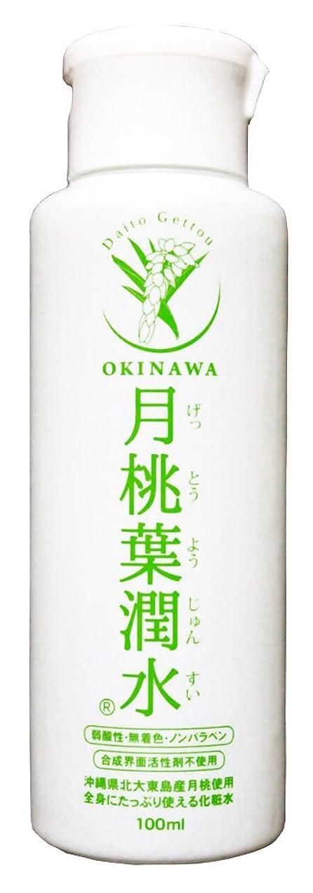 ローラー気がついて和らげる化粧水 月桃葉潤水 100ml 1本
