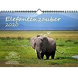 Elefantenzauber - Calendario 2020, DIN A4, diseño de elefantes