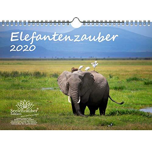 Olifantenmagie DIN A4 kalender 2020 olifanten en daarnaast 1 cadeaukaart - Zelmagie