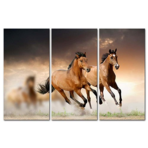 Canvas Print Wall Art Painting For Home Decor Running Wild Horse Brown  Horses Galloping In Sunset