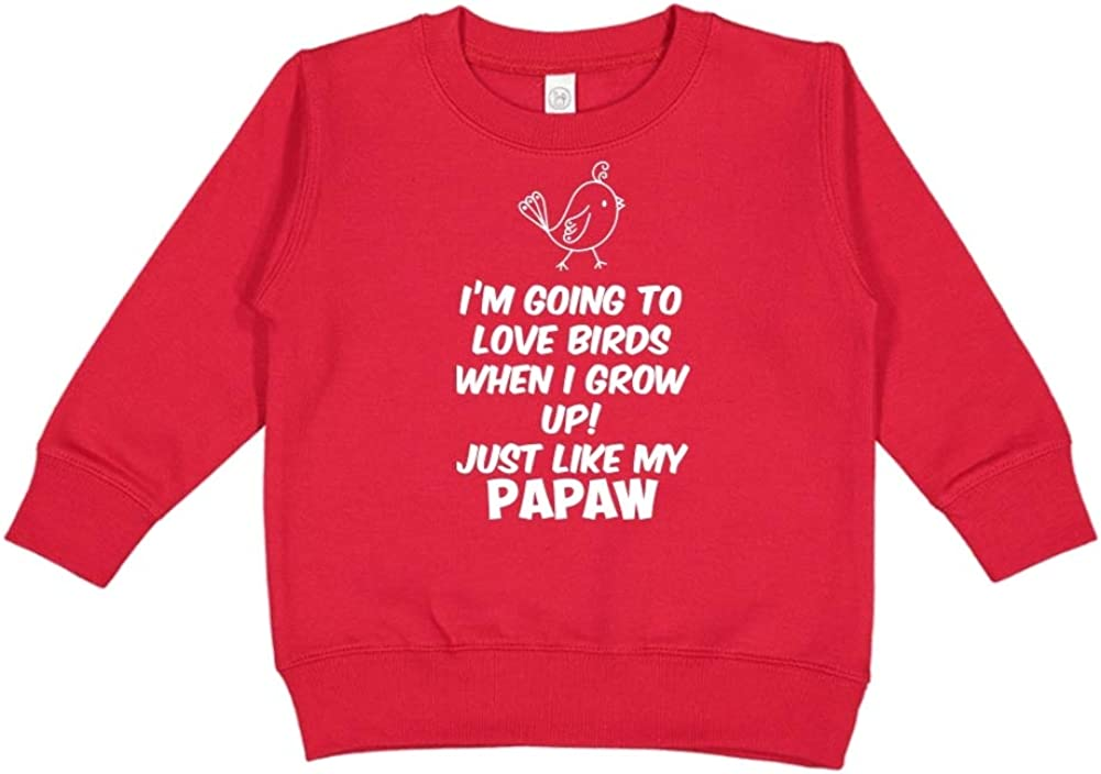 Im Going to Love Birds When I Grow Up Toddler//Kids Sweatshirt Just Like My Papaw