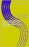 ECONOMIZADORES EN SISTEMAS DE RECUPERACION DE CALOR: Temas técnico-prácticos sobre diseño y prestaciones de las calderas de vapor