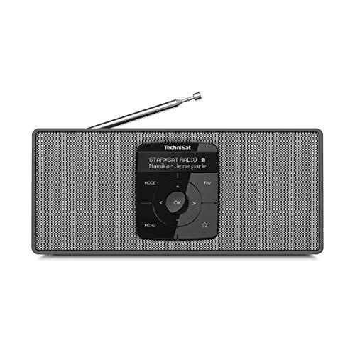 TechniSat DIGITRADIO 2 S - Tragbares DAB Stereo-Radio mit Akku (DAB+, UKW, Bluetooth Audiostreaming, OLED Display, Kopfhöreranschluss, Stereo 2 W RMS) schwarz/silber