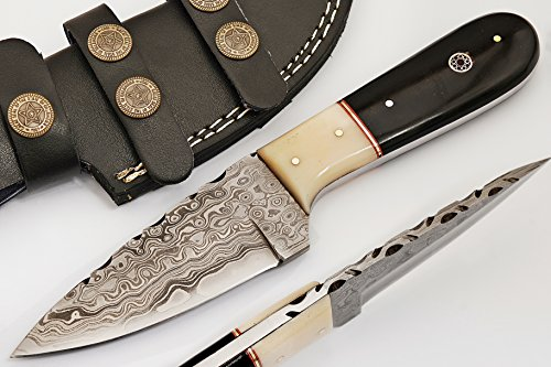 SharpWorld Beautiful Damascus Knife Made of Remarkable Damascus Steel and Exotic Handle -Best Hunting Knife with Leather Sheath TJ101 (Camel Bone and Horn)