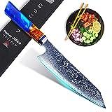 Jikko® Cuchillo de chef japonés Kiritsuke 33 cm con hoja de acero Damasco 67 capas – Modelo original – Cuchillo de cocina profesional de alta gama con mango de madera raras de cocobolo