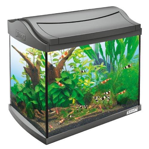 Tetra 171855 AquaArt Shrimps Aquarium-Komplett-Set 20 L, ideal für die Haltung und Zucht von Garnelen, anthrazit