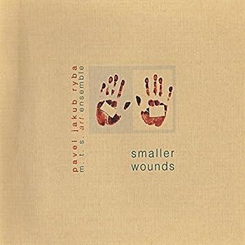 Smaller Wounds (feat. MTS Art Ensemble)