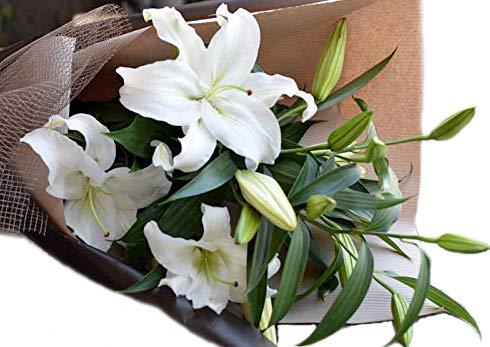 カサブランカ 花 ギフト 15輪 お祝い 花束 誕生日 バレンタイン ギフト にも ギフト 結婚 送別 退職 母の日 送別 にも