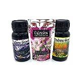 MADAME GROW / Kit Bloom Complet - REVIENTA COGOLLOS/Marihuana o Cannabis/mas Frutos, Flores o cogollos Floración Explosiva - Mejora el Sabor Cubre Toda la floración