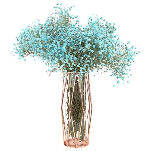 Vaso di fiori in vetro con supporto in metallo geometrico Fioriera in cristallo trasparente Vaso in metallo oro rosa Vaso di fiori squisito per soggiorno Decorazioni per feste di matrimonio Large