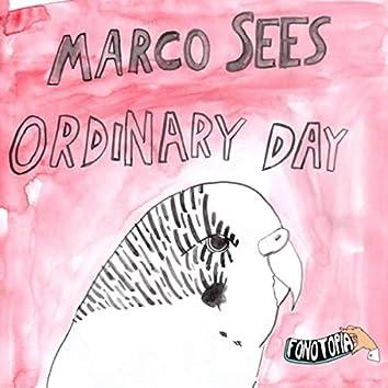 Ordinary Day