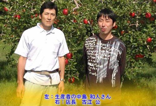 産地直送低農薬・有機肥料栽培長野県中島農園の特選二十世紀梨約4.5キロ12~15個産地箱入ご家庭用わけあり(規格外品)