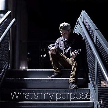What's My Purpose
