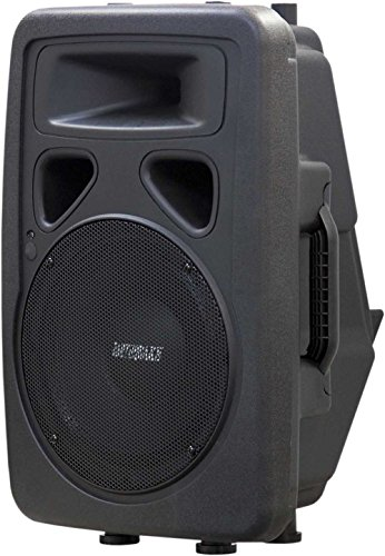 Earthquake Sound DJ-10M 2-Wege-Monitor/PA-Lautsprecher, 600 Watt