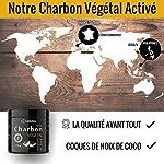 Charbon Végétal Activé en Poudre - 150 g - 100% issu de Coques de Noix de Coco #3