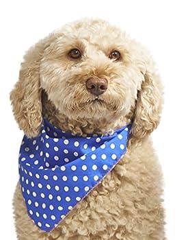 Pet Pooch Boutique Bandana à Pois pour Chien Bleu Taille S/M