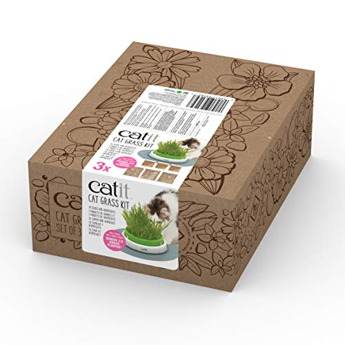 catit Katzengras 3er Pack - Cat Grass Kit