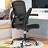 Office Chair, Ergonomic Desk Chair with Adjustable Lumbar Support & Seat Height, High Back Mesh Computer Chair with Flip-up Armrests-BIFMA Passed Task Chairs, Executive Chair for Home Office