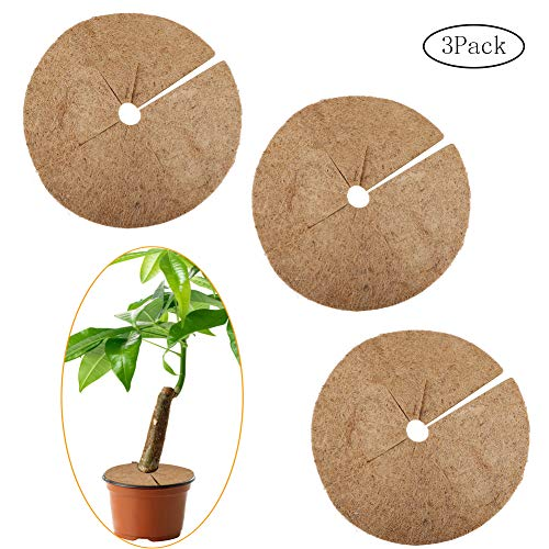 BELUPAID Coconut Fibers Mulch Ring Tree Protector Mat, Natural Coco Coir Garden Tree Protection Weed Control, Multifunction Ring Tree Skirt - 3 Pack