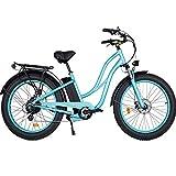 MaxFoot Electric Bike 750W 26' Fat Tire Electric Mountain Beach Cruiser Women Step Thru Ebike for...