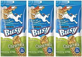 busy bone chewnola