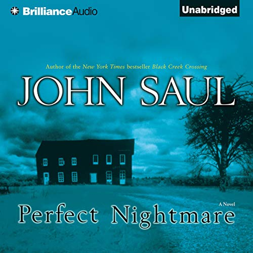 Perfect Nightmare audiobook cover art