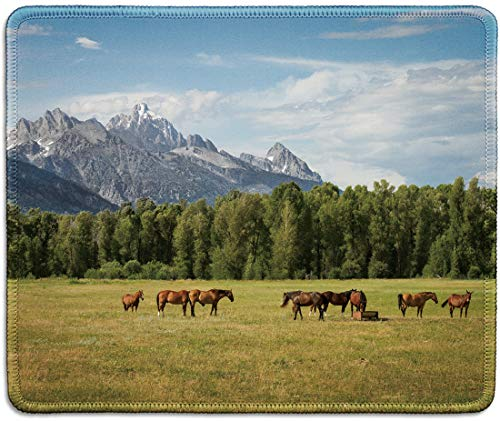 dealzEpic - Art Mousepad - Natural Rubber Mouse Pad Printed with Mountain Pasture Landscape with Grazing Horses - Stitched Edges - 9.5x7.9 inches