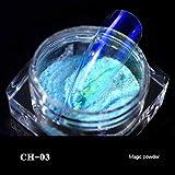 PHILSP Molde de Silicona 5 Gramos de Polvo mágico Pigmento Transparente Resina epoxi Pigmento fabricación de Joyas 3#