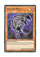 遊戯王 英語版 SR06-EN016 Plague Wolf 疫病狼 (ノーマル) 1st Edition