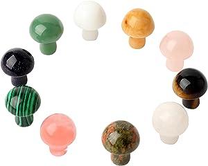 Amazingxy 10 Pcs Crystal Mushroom Sculpture Crystal Sculptures Hand Carved Gemstone Mushrooms Decor Stone and Crystals