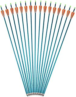 AMEYXGS Tirocon Arco Flechas de Aluminio 31 Pulgadas Flechas de Arco de Caza y Flechas de Práctica de Puntería Spine 500 con Punta de Flecha Enroscada para Arco Compuesto y Arco Recurvo