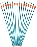 AMEYXGS Tirocon Arco Flechas de Aluminio 31 Pulgadas Flechas de Arco de Caza y Flechas de Práctica de Puntería Spine 500 con Punta de Flecha Enroscada para Arco Compuesto y Arco Recurvo (Azul, 6 pcs)