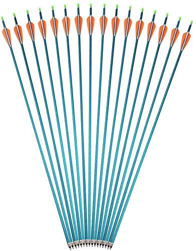 AMEYXGS Bogenschießen Aluminiumpfeile 31zoll Jagd Bogen Pfeile und Übungspfeile im Visier Spine 500 mit Einschraubpfeilspitze zum Verbindung Bogen und Recurve Bogen (Blau, 6 Stück)