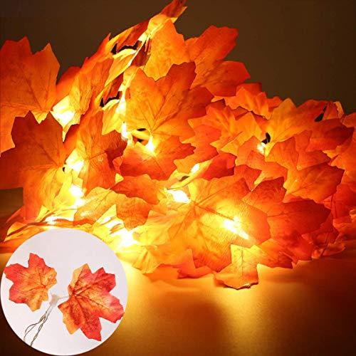 XIYUNTE Guirnaldas luminosas Hoja de arce artificial, 6M 40 LED Luces de cadena Guirnaldas luminosas de exterior, Guirnalda de otoño Lámparas decoradas Iluminación de Navidad de exterior