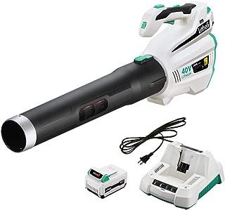 shindaiwa battery blower