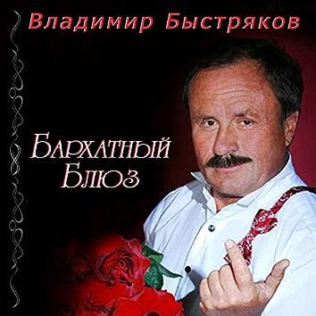 Владимир Быстряков. Бархатный блюз
